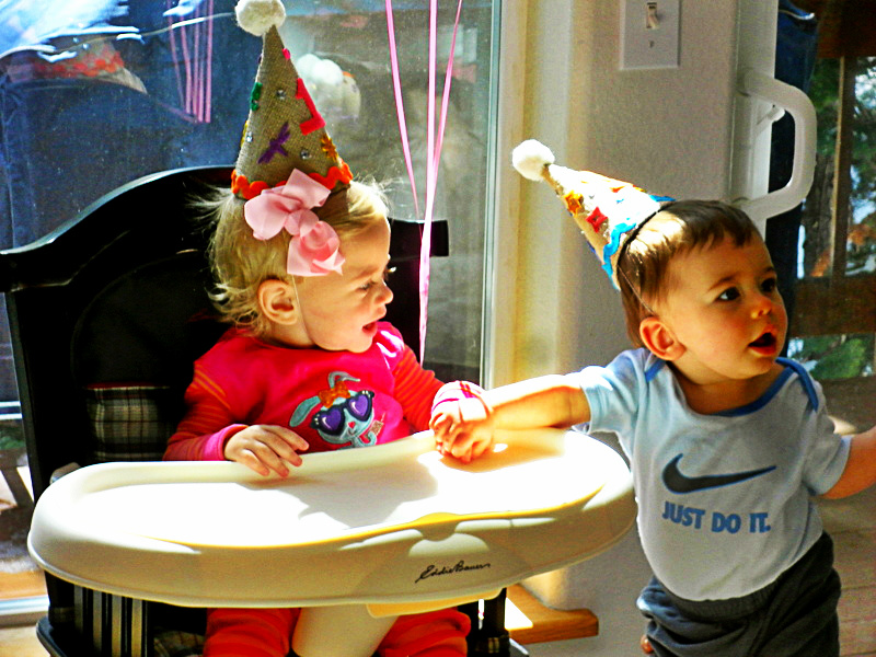 Babys First Birthday Party