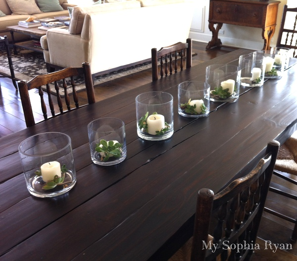 Decorating with Succulent Plants