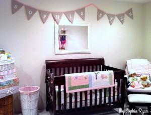 Drop Cloth Baby Banner