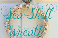 Sea Shell Wreaths